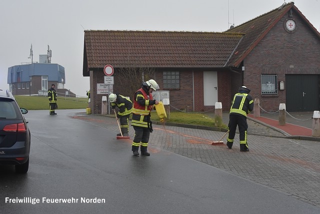 Ölschaden am Westhafen, 20.01.2017