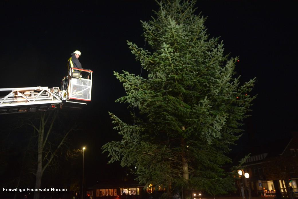 Weihnachtsbaum, 17.11.2017