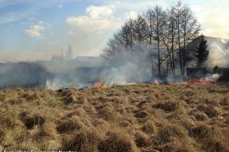 Flächenbrand, 03.04.2013