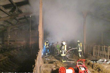 Stallgebäudebrand, 18.02.2014