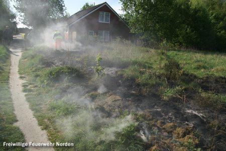 Flächenbrand, 08.05.2011
